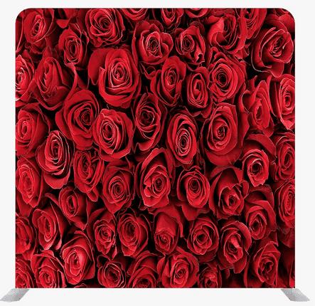rose background1
