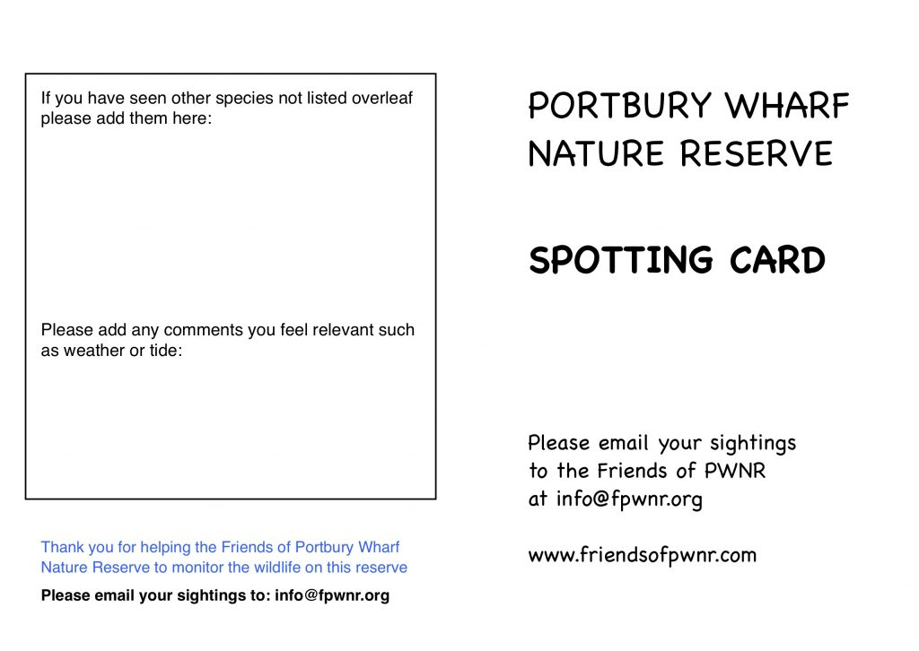 Spotting card for Wildlife Monitoring page 2
