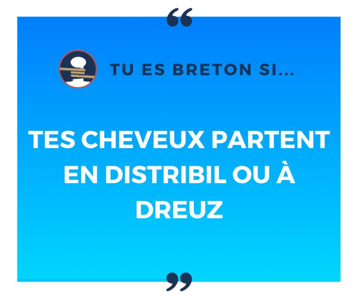 Tu es breton si tes cheveux partent en distribil ou à dreuz !
