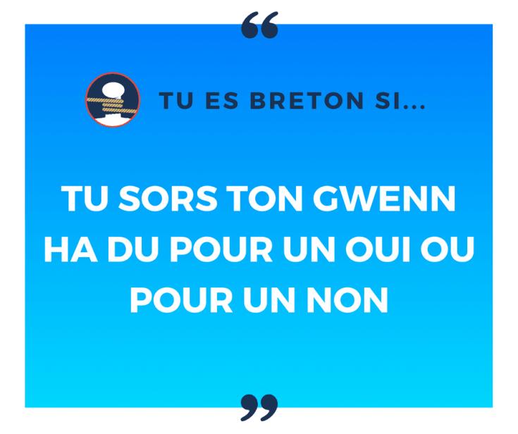 Tu es breton si tu sors ton Gwenn ha Du pour un oui ou pour un non !