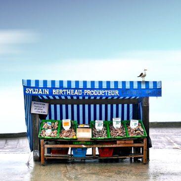 Marché aux huitres au port de Cancale