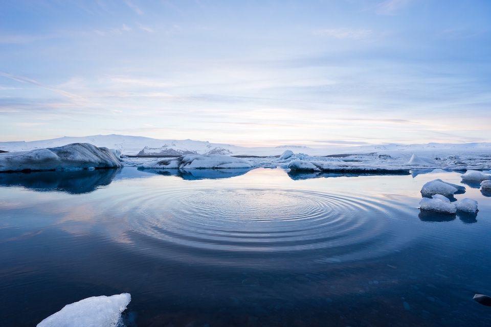 Entre l'eau et la glace