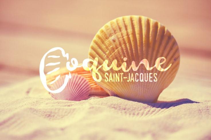Coquine Saint-Jacques, ouverture aux plaisirs !