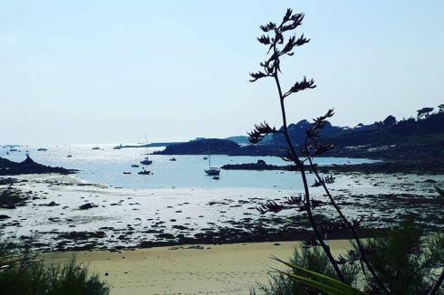 Exotique île de Batz