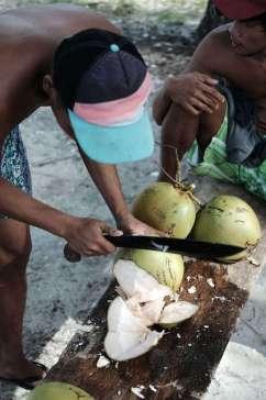 Une noix de coco fraîche et juteuse