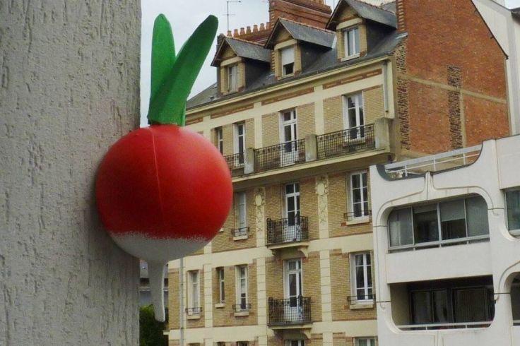 Un radis en polystyrène est accroché sur une façade d'immeuble.