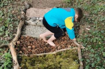Un enfant marche sur des pommes de pin.