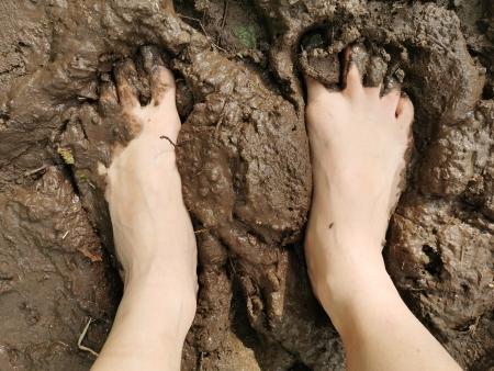 Les pieds dans la boue.
