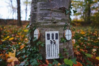 Découvrez ici les activités à faire en extérieur aves les enfants lors d'une balade en forêt.