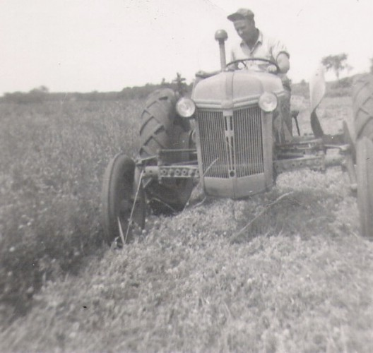 Working the Land, 1951