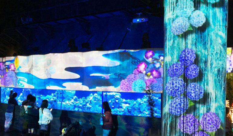 水族館×プロジェクションマッピングで都心の初夏を涼しく…アクアパーク品川で開催「花美アクアリウム by NAKED」