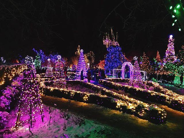 Merry merry #Christmas @vandusengarden #festivaloflights #vancouver - from Instagram