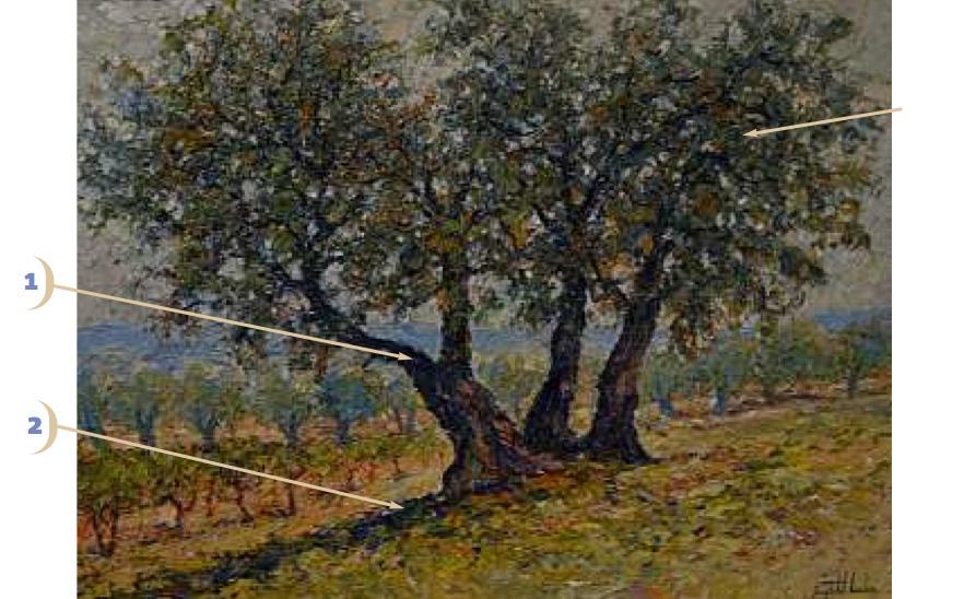 trois-oliviers-de-raynald-leclerc