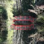 Bridge in the Japanese Garden, Portmeirion
