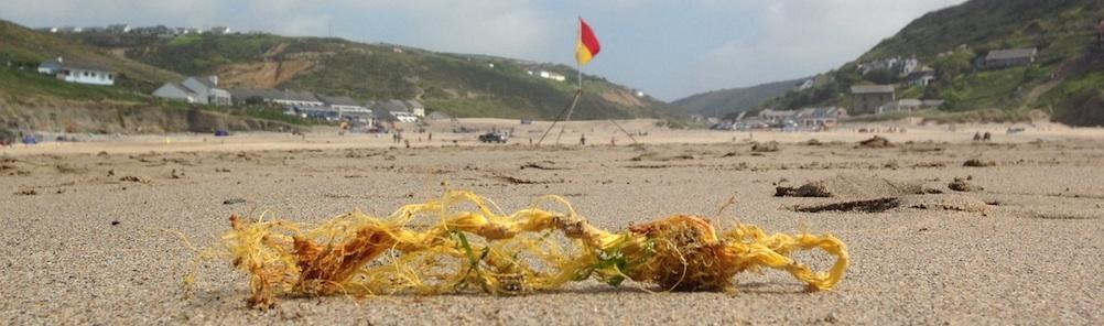 beach-rubbish-header