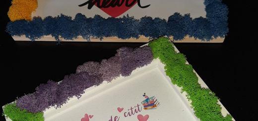 rame cu licheni decorativi