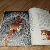În bucătăria lui Joseph cartea lunii