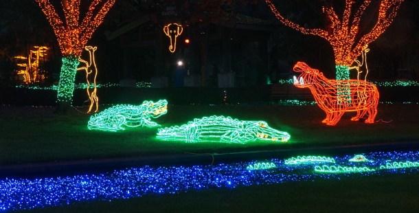 oregon zoolights