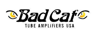 Bad Cat Guitar Amps