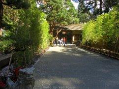 JapaneseGarden_IMG_4686
