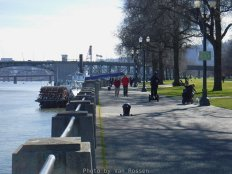 WaterfrontPark_DSCF0377