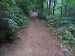 ForestPark_IMG_0489