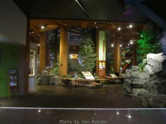ForestMuseum_IMG_1933