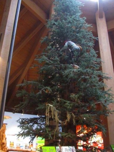 ForestMuseum_IMG_2005