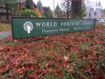 ForestMuseum_IMG_2058