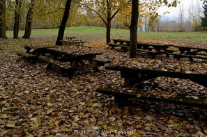 Picnic tables in the Fall