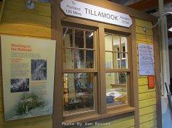 TillamookForestIMG_3318