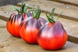 blue pear tomato