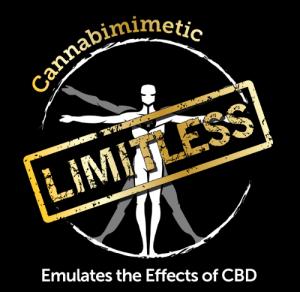 new-limitless-logo2