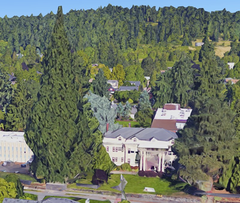 giant sequoia portland