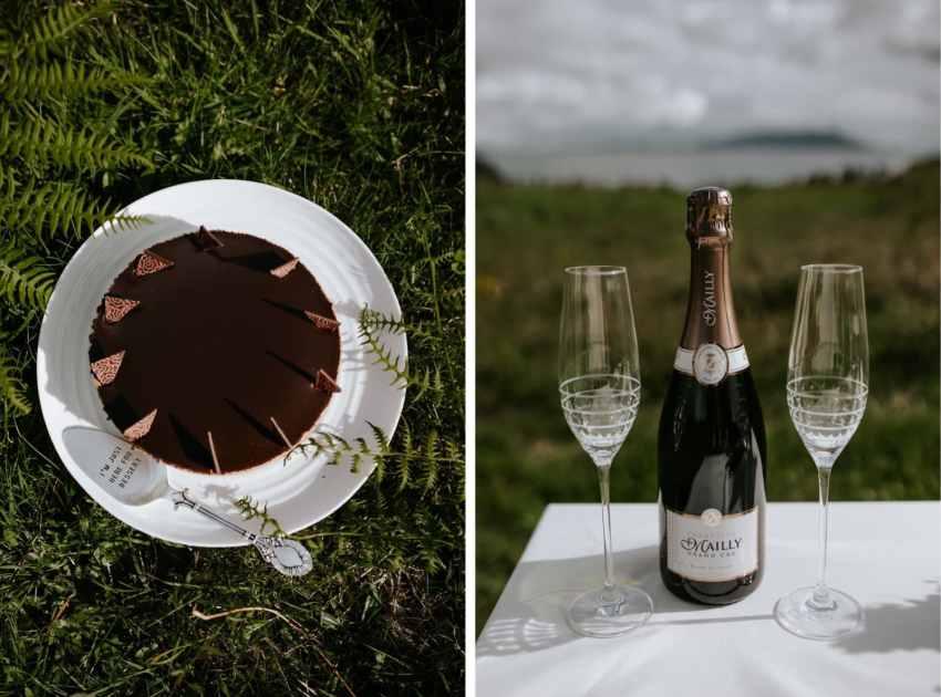 lummi island wedding seattle wedding photographer cake champagne