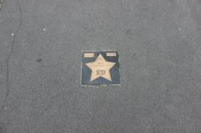 Stern am Signal Iduna Park für die Meisterschaft 2011/2012 | Bildrechte: nickneuwald