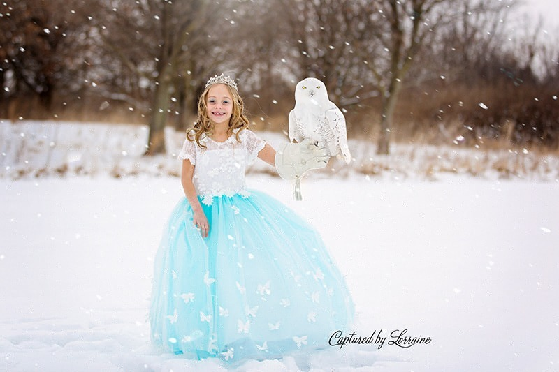 Fairy tale snow photoshoot- Hampshire Illinois