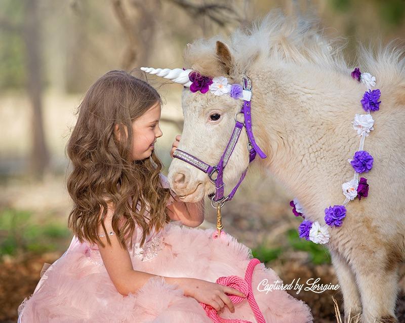 2 Unicorn photo session
