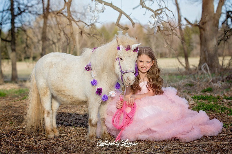 Unicorn Photo Session with a Real Horse-Hampshire Illinois