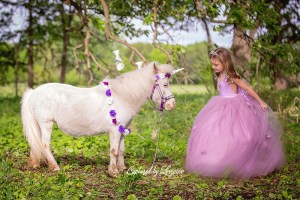 Geneva Illinois Unicorn photos