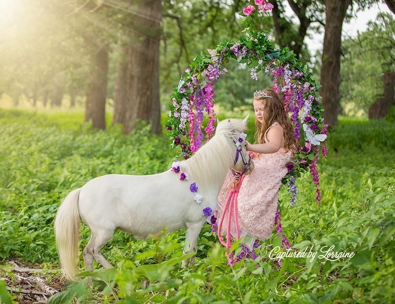 Hampshire Illinois Unicorn Photo Session