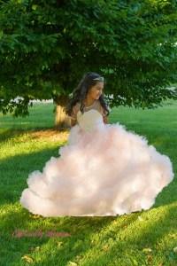 Princess Photos Illinois (