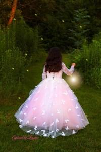 Princess Photos Illinois