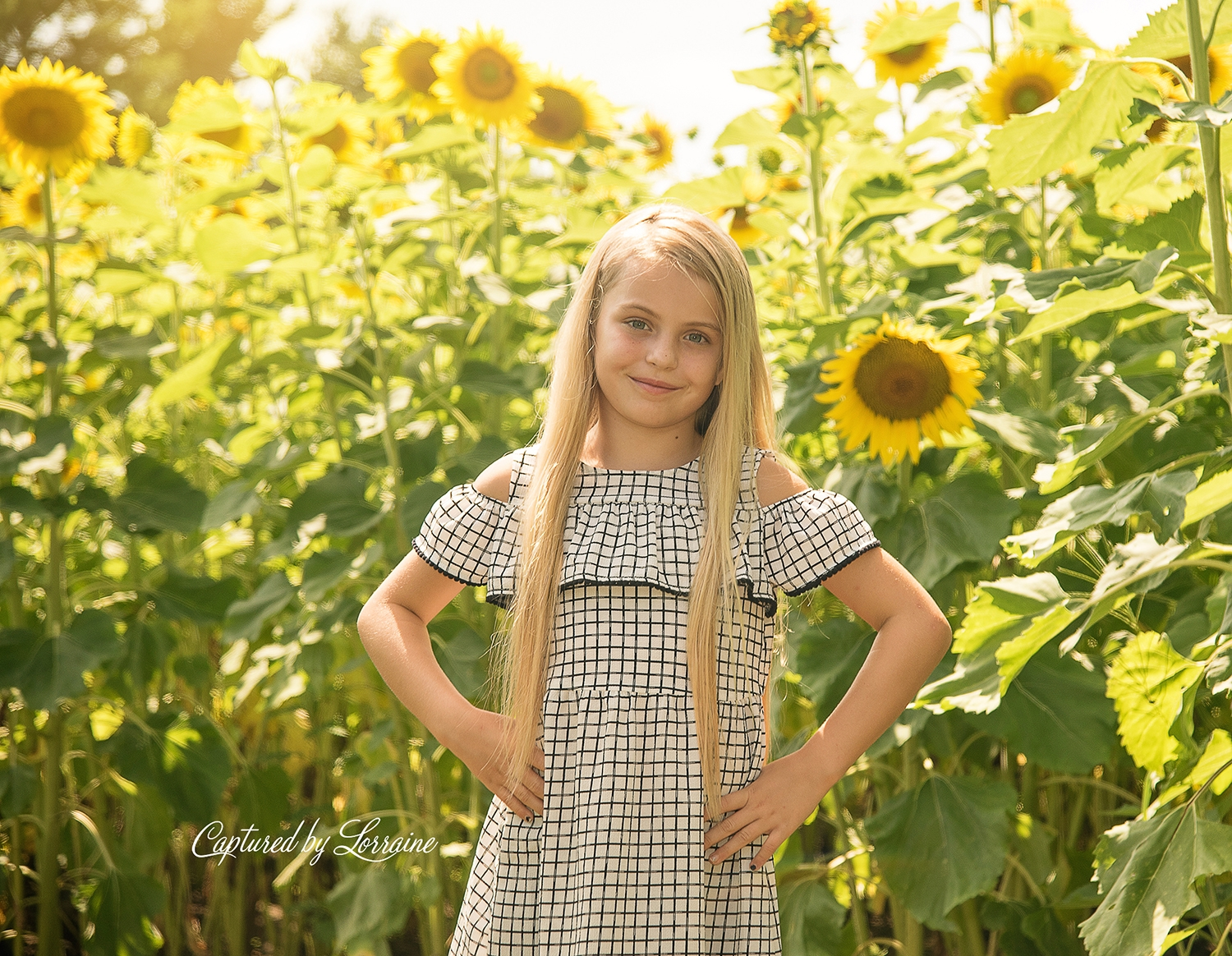 Sunflower Photo Session Illinois