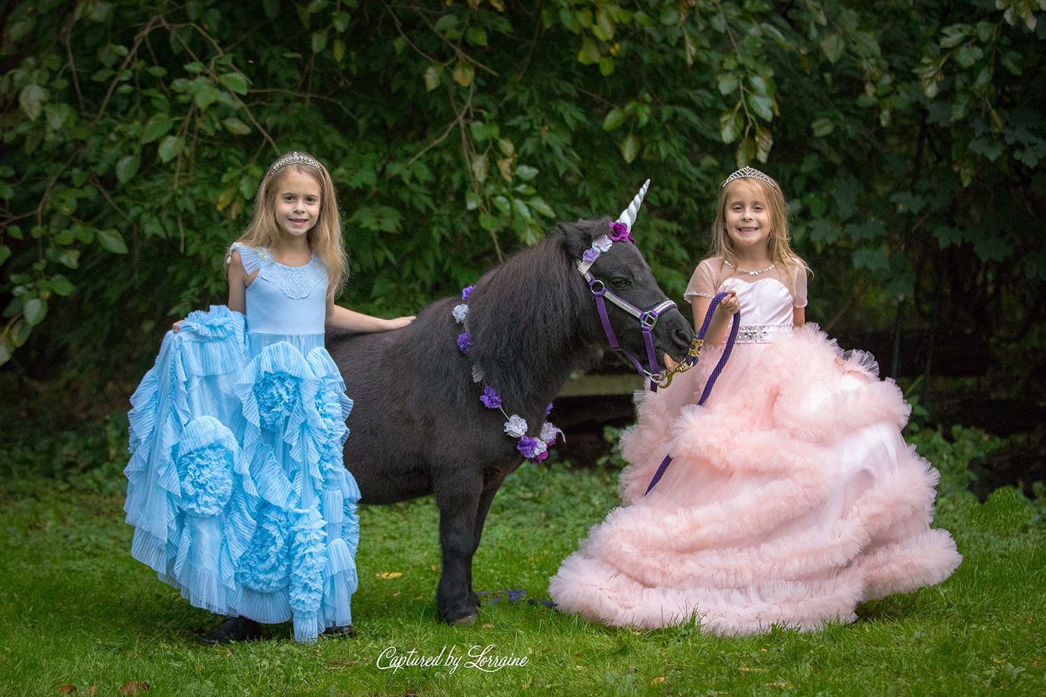 Unicorn Photo Session Huntley Illinois