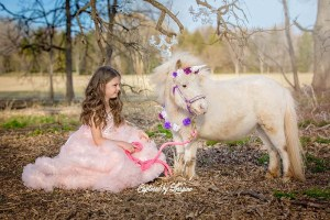 3-Unicorn-photo-session