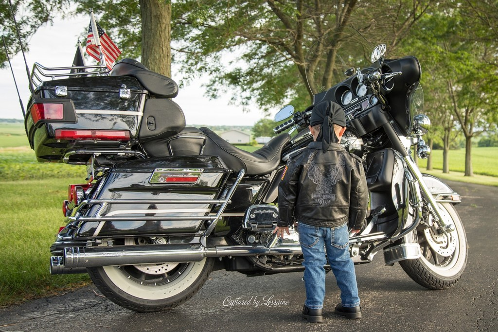 Harley Photos Elgin Illinois