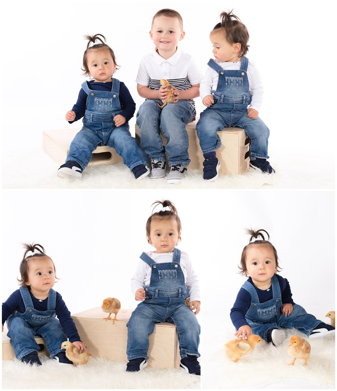Sibling toddler kids portraits with baby chicks