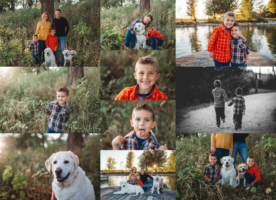 two boys and two dogs