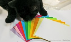 Bella helps to position the envelopes.